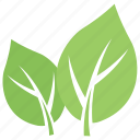 green leaf, leaf, leaf design, milkweed leaf, wild leaf icon