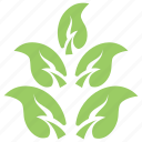 apple leaves twig, fruit leaf, green leaf, leaf, leaf design icon
