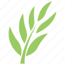 common ash leaves, green leafy branch, green leafy twig, rowan twig, tree branch icon