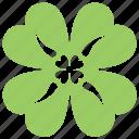clover leaf, four-leaf clover, lucky clover, shamrock plant, trefoil plant icon