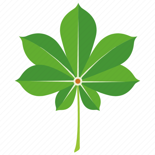 botany, chestnut, horticulture, leaf, leaves, tree icon