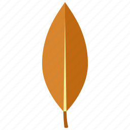 autumn, eucalyptus, fall, leaf, magnolia, nature, tree icon