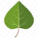 birch, extract, leaf, leaves, natural, sesame icon