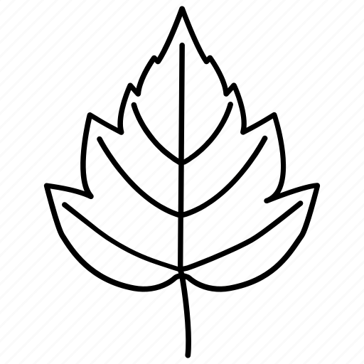 foliage, hawthorn, leaf, leaves, tree icon