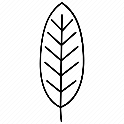 garden, leaf, medlar, nature, shrub, tree icon