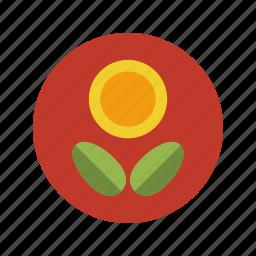 ecology, flower, garden, life, minimalistic, nature, plant, sunflower icon