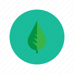 ecology, green, leaf, minimalistic, nature, plant, tree icon