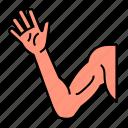 anatomy, arm, body, hand, limb icon
