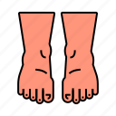 anatomy, body, feet, leg, limb icon