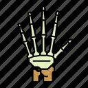 anatomy, body, bones, finger, hand, limb
