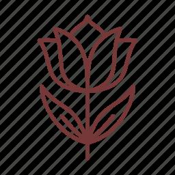 cosmetics, flower, leaf, nature, tulip icon