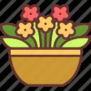 blossom, botanical, flowers, garden, nature, pot icon
