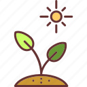 botanical, gardening, growing seed, nature, sprout, tree icon