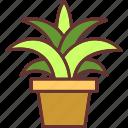 blossom, botanical, garden, nature, plant, pot icon