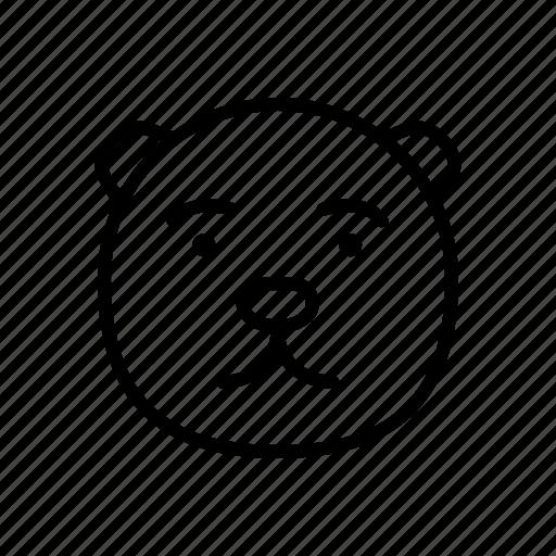 animal, bear, brown, face, pet, polar, zoo icon