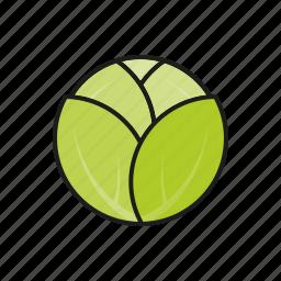 cabbage, food, leaf, vegetables, white vabbage icon