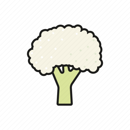 cauliflower, food, vegetables icon