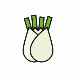 bulb, fennel, food, vegetables icon