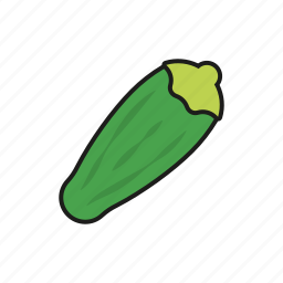 food, gourd, vegetables, zucchini icon