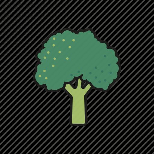 broccoli, cabbage, food, vegetables icon