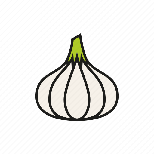 bulb, food, garlic, ingredient, spice, vegetables icon