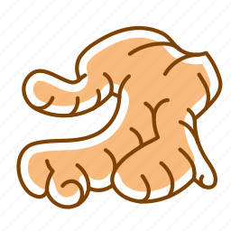 food, ginger, ginger root, root, vegetable icon