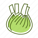 fennel, food, vegetable icon