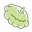 food, squash, vegetable icon