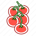 cherry tomato, food, tomato, vegetable icon