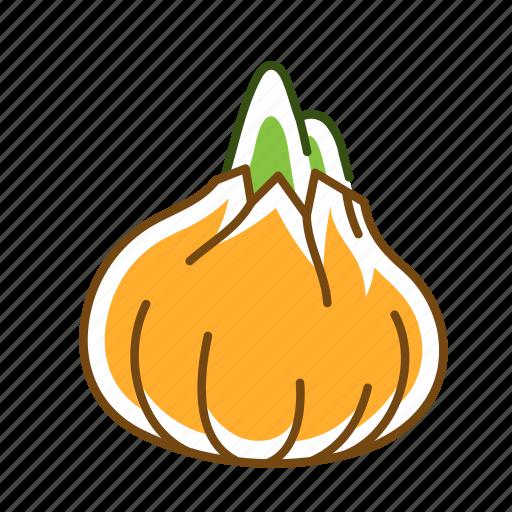 food, onion, vegetable icon