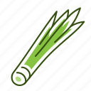 chives, food, spring onion, vegetable icon