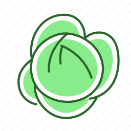 cabbage, food, vegetable icon