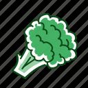 broccoli, food, vegetable