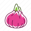 food, onion, red onion, vegetable icon