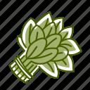 food, sorrel, spinach, vegetable icon