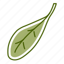 cress, food, leaf, vegetable icon