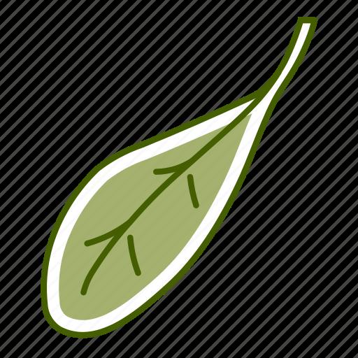 cress, food, leaf, vegetable icon