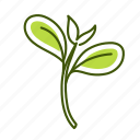 cress, food, vegetable icon
