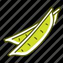close pod, food, pea, pod, vegetable icon