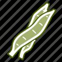 bean, food, pod, vegetable icon