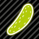 cucumber, food, pickle, vegetable