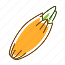 food, onion, shallot, vegetable icon