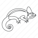 animal, chameleon, isolated, line, lizard, outline, reptile icon
