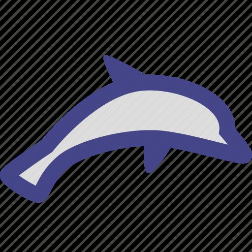 dolphin, ocean, sea, sealife icon