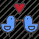 love, birds, heart, valentine