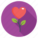 heart flower, heart rose, in love, love flower, proposal icon