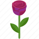 floral, flower, gift, love, rose, valentine icon