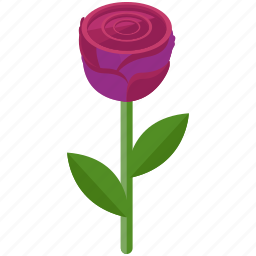 floral, flower, gift, love, rose, valentine icon