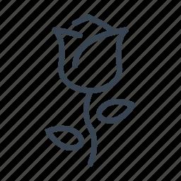 flower, love, romantic, rose, valentine's day icon