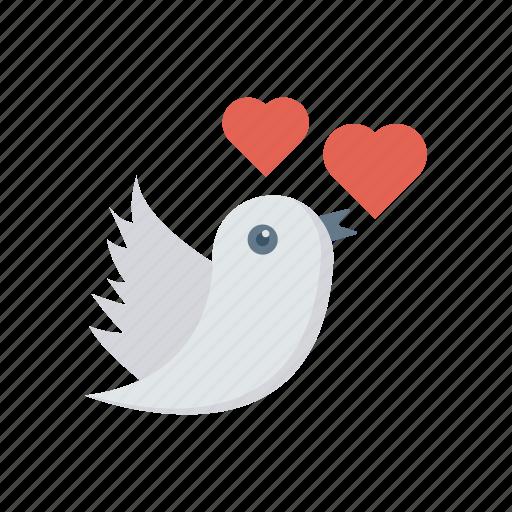 bird, fly, love, romance icon